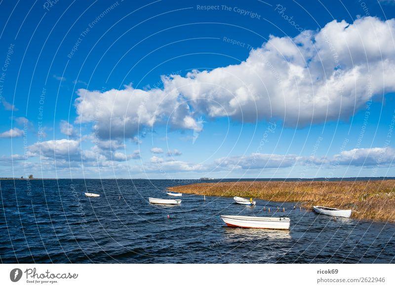 Boote auf der Ostsee in Dänemark Ferien & Urlaub & Reisen Natur blau Wasser Landschaft Erholung Wolken Architektur gelb Umwelt Küste Tourismus Wasserfahrzeug