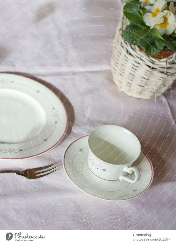 eingedeckt weiß Pflanze Blume Blatt kalt elegant leer Dekoration & Verzierung trist Geschirr Tasse Teller Duft Korb Vorfreude fein