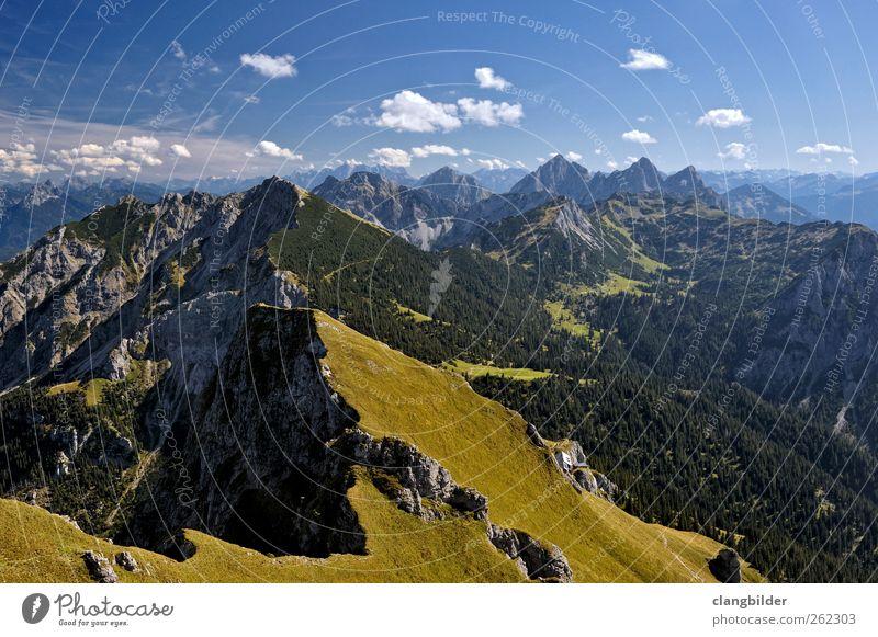 Above the Timberline Natur Ferien & Urlaub & Reisen Sommer Erholung Landschaft Berge u. Gebirge Felsen wandern Ausflug Klettern Alpen Schönes Wetter Gipfel Bergsteigen