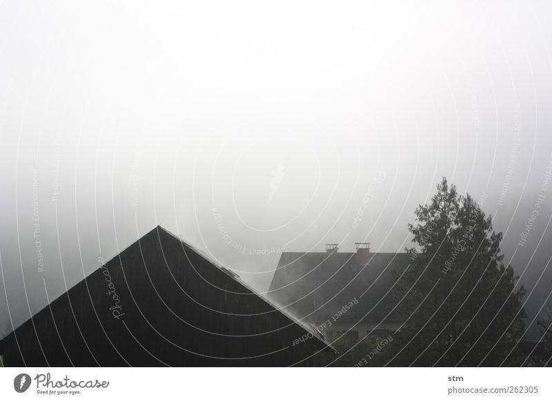 smoky grey Himmel Wetter schlechtes Wetter Nebel Baum Dorf Kleinstadt Menschenleer Haus Bauernhof Dach Dachrinne Schornstein dunkel einfach kalt trist grau