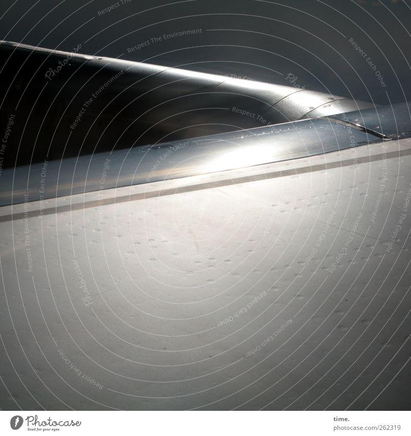 Air Whale Riding Luftverkehr Flugzeug Passagierflugzeug Endzeitstimmung geheimnisvoll Surrealismus Tragfläche gleißend Metallwaren Oberfläche