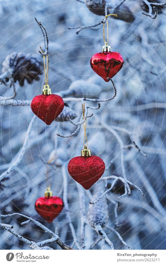 Rote weihnachtliche herzförmige Kugeln auf Ästen Design Winter Schnee Dekoration & Verzierung Feste & Feiern Weihnachten & Advent Baum Herz neu blau rot