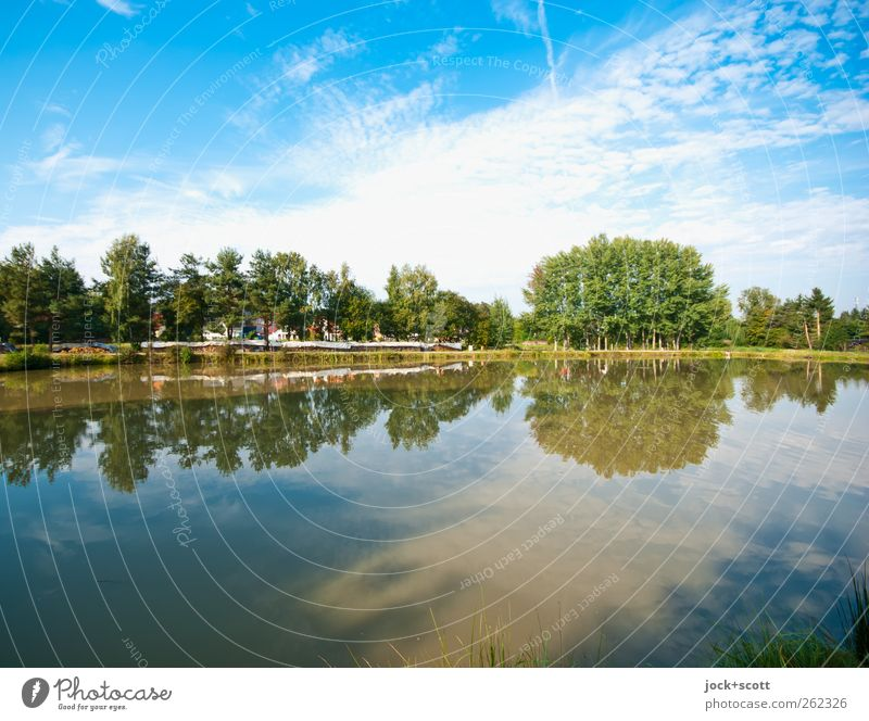 Schau ins Land Himmel Natur blau Farbe Wasser Sommer Baum Landschaft ruhig Wolken Tier Wald Umwelt Wärme natürlich Linie