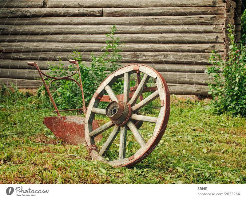 Rad und Pflug Gras Dorf Holz Rost alt historisch retro Nostalgie landwirtschaftlich antik Antiquität Radschlagen Land Grunge Objektfotografie altmodisch