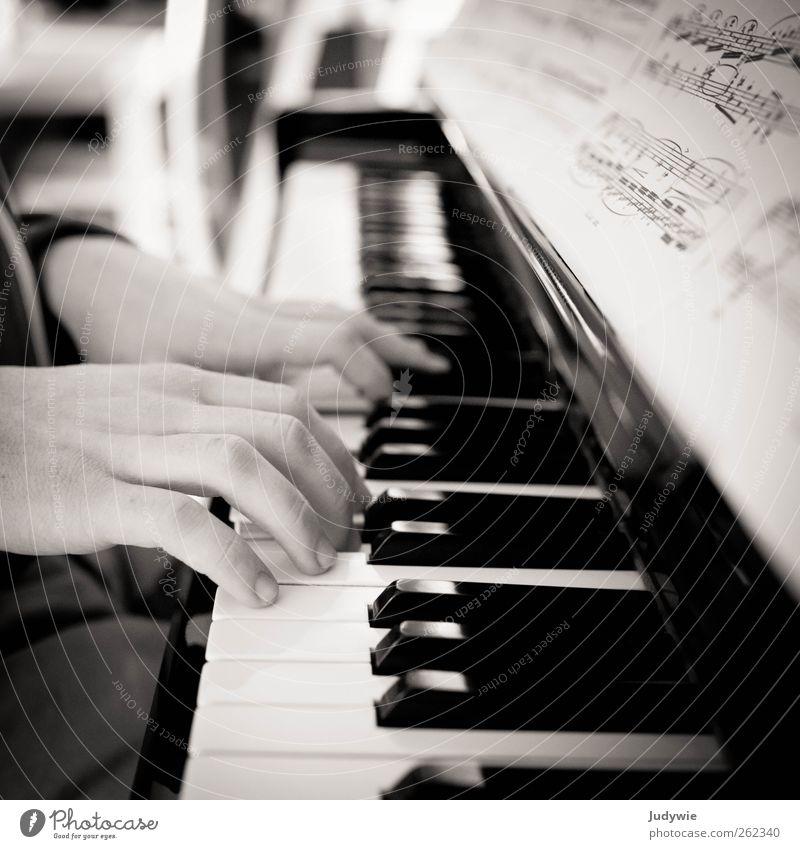 Pianist Freizeit & Hobby Spielen Bildung Beruf Musiker Mensch maskulin Junger Mann Jugendliche Hand Kunst Künstler Konzert Klavier Musiknoten Taste lesen