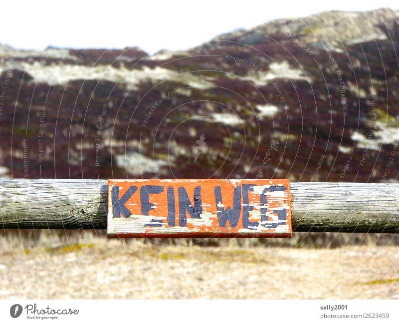 KEINWEG... Landschaft Düne Wege & Pfade alt orange Verbote Schilder & Markierungen Durchgang Schriftzeichen abblättern Balken Handschrift gemalt Hinweisschild