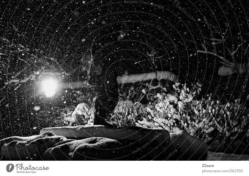 dark night II Natur Jugendliche Winter Einsamkeit Erwachsene Umwelt dunkel Landschaft kalt Schnee Garten Schneefall träumen Lampe Kraft maskulin