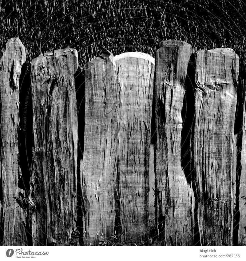 Bretterzaun alt Holz grau verfallen Zaun verwittert