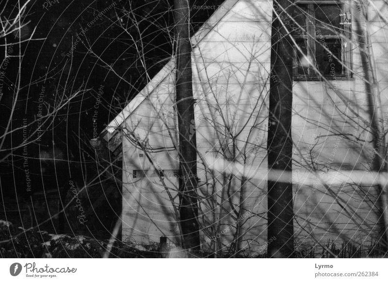 stockfinster die nacht Haus Natur Winter Baum alt dunkel gruselig grau schwarz weiß Wohnhaus Schwarzweißfoto Außenaufnahme Menschenleer Nacht Zweige u. Äste