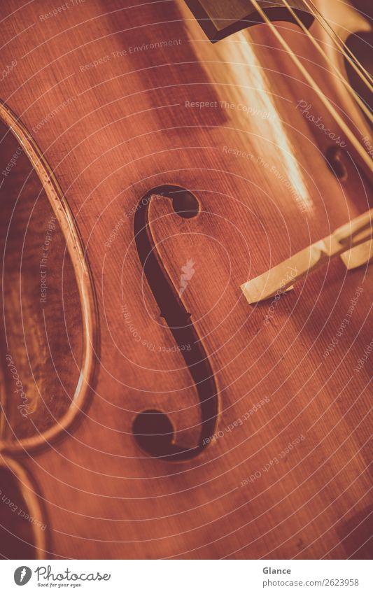 Klassik ganz nah elegant Stil Kunst Musik Orchester Cello Holz ästhetisch braun Stimmung Warmherzigkeit schön Design einzigartig Kultur Qualität Musikinstrument