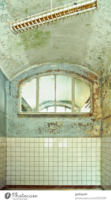der Nächste bitte Menschenleer Gebäude Architektur Mauer Wand Fenster Denkmal Fliesen u. Kacheln Deckenlampe Deckenbeleuchtung Fensterkreuz alt außergewöhnlich