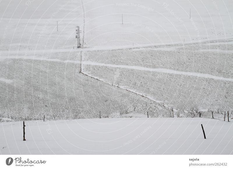 baumloben | im feld Umwelt Natur Landschaft Winter Schnee Feld kalt grau schwarz weiß ruhig Traurigkeit Zaun Ferne Linie Fluchtlinie Pfosten Farbfoto