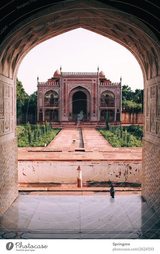 ohhSYMMETRIE Agra Indien Stadt Palast Architektur Sehenswürdigkeit alt sportlich orange rosa rot Macht Vertrauen Wachsamkeit ruhig Glaube demütig Taube