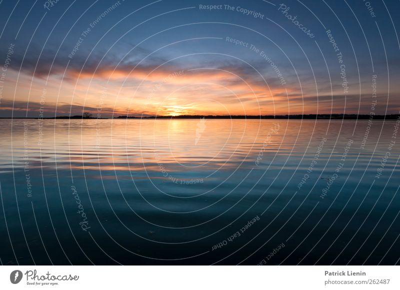 Grab the sunset Himmel Natur blau Wasser Ferien & Urlaub & Reisen Pflanze Sonne Meer Strand Wolken ruhig Erholung Umwelt Landschaft Küste Luft