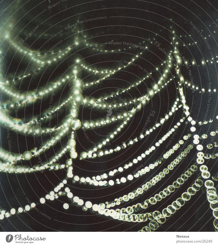 Netzwerk Regen Netzwerk feucht Spinne Spinnennetz Lichterkette