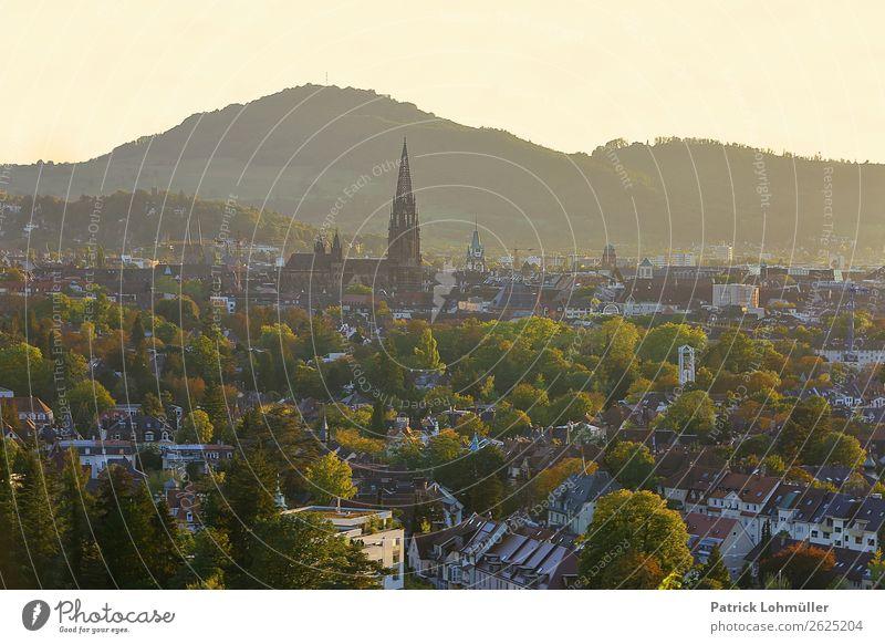 Freiburger Färbungen Ferien & Urlaub & Reisen Tourismus Städtereise Umwelt Natur Wolkenloser Himmel Herbst Schönes Wetter Baum Berge u. Gebirge