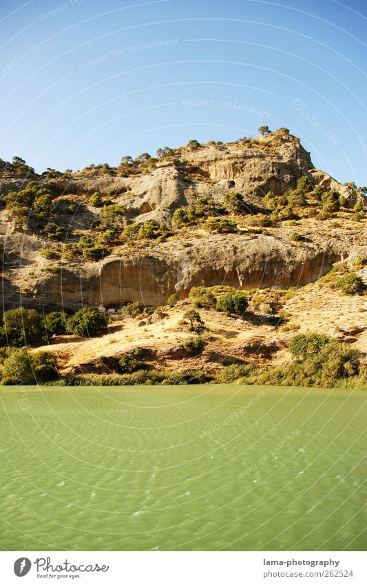 La ribera [XXIV] Natur Wasser Baum Landschaft Wellen Felsen Sträucher Urelemente Fluss Hügel Flussufer Spanien Stausee Andalusien Malaga