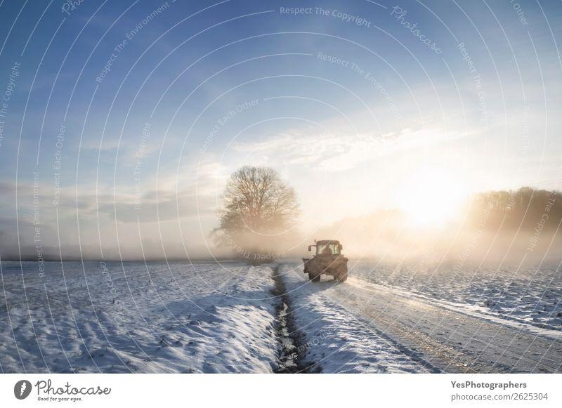 Traktorsilhouette durch Nebel bei Sonnenaufgang Lifestyle Winter Schnee Arbeit & Erwerbstätigkeit Beruf Maschine Natur Landschaft Wetter Schönes Wetter Wiese