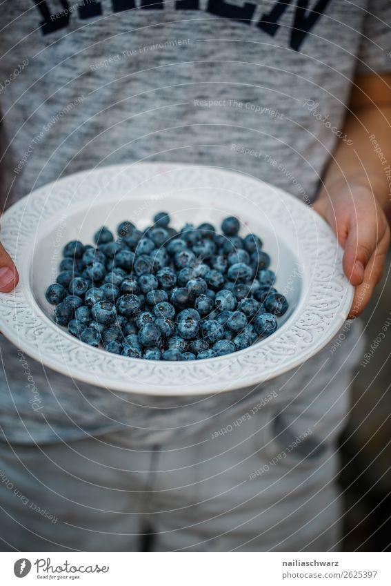 Heidelbeeren Lebensmittel Frucht Dessert blaue beeren Beeren Ernährung Bioprodukte Vegetarische Ernährung Diät Teller Schalen & Schüsseln Kind Junge Kindheit