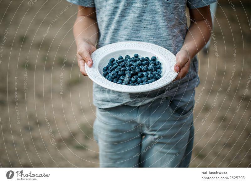 Heidelbeeren Kind Mensch Gesunde Ernährung Sommer Farbe Hand Gesundheit Lebensmittel natürlich Junge Frucht Körper süß frisch Kindheit