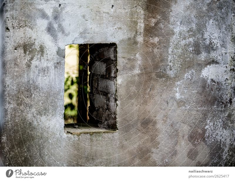 Fenster grün Haus dunkel Architektur Wand Traurigkeit Gebäude Deutschland Mauer grau Europa dreckig Vergänglichkeit kaputt Wandel & Veränderung