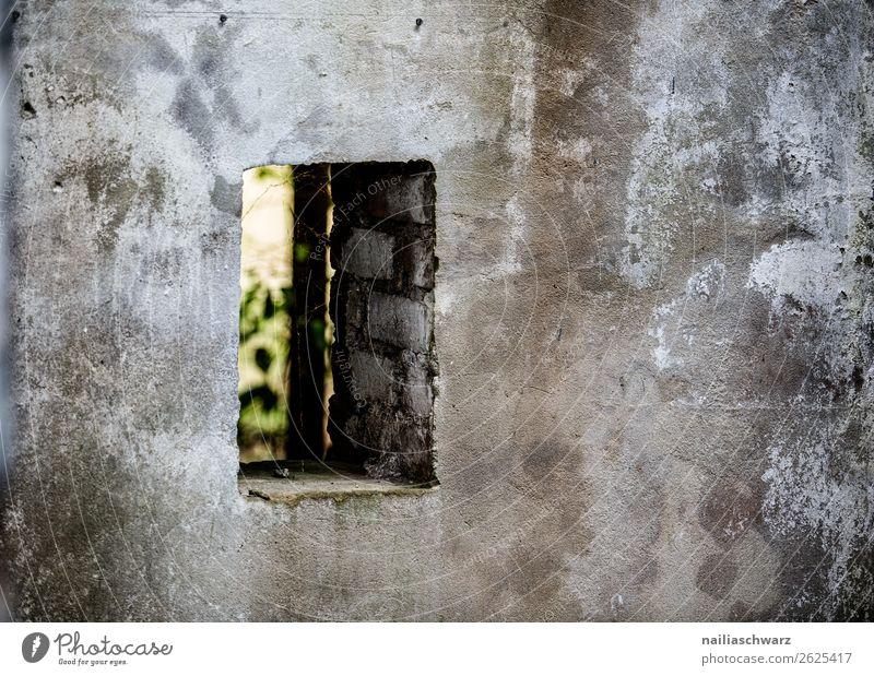 Fenster Vogelsang-Warsin Meklenburg Mecklenburg-Vorpommern Deutschland Europa Stadtrand Menschenleer Haus Bauwerk Gebäude Architektur Kazerne Mauer Wand dreckig