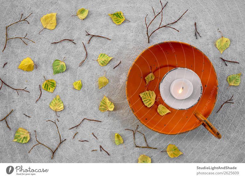 Herbstblätter und gemütliches Kerzenlicht Design schön Wellness Wohlgefühl Freizeit & Hobby Garten Dekoration & Verzierung Lampe Gartenarbeit Natur Wetter Wind