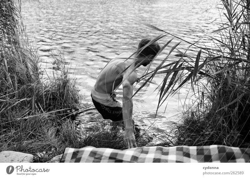 Loslassen Mensch Natur Jugendliche Wasser ruhig Erwachsene Umwelt Leben Freiheit See Körper Schwimmen & Baden Ausflug Abenteuer 18-30 Jahre Junger Mann
