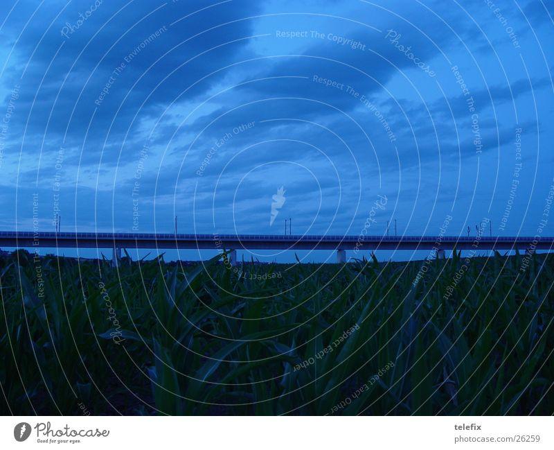 Hochgeschwindigkeits ICE Eisenbahnbrücke Schnellzug Feld dunkel Dämmerung Wolken Verkehr Brücke Himmel blau