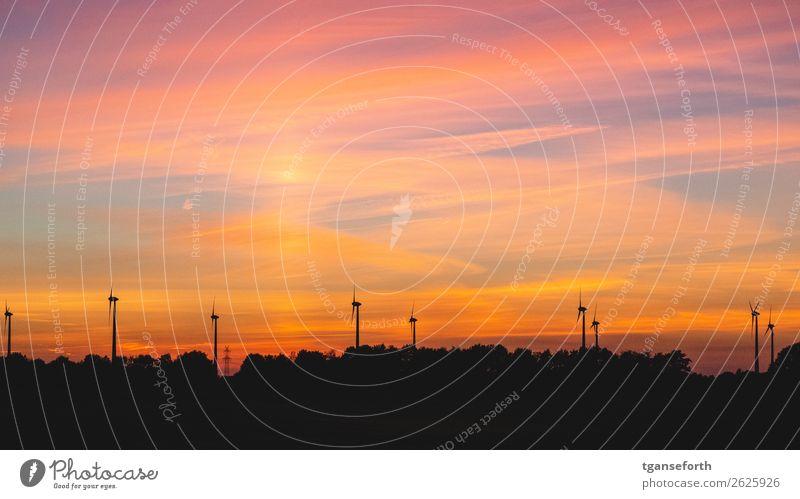 Windpark im Sonnenuntergang Wirtschaft Industrie Technik & Technologie Fortschritt Zukunft Energiewirtschaft Erneuerbare Energie Windkraftanlage Umwelt Himmel