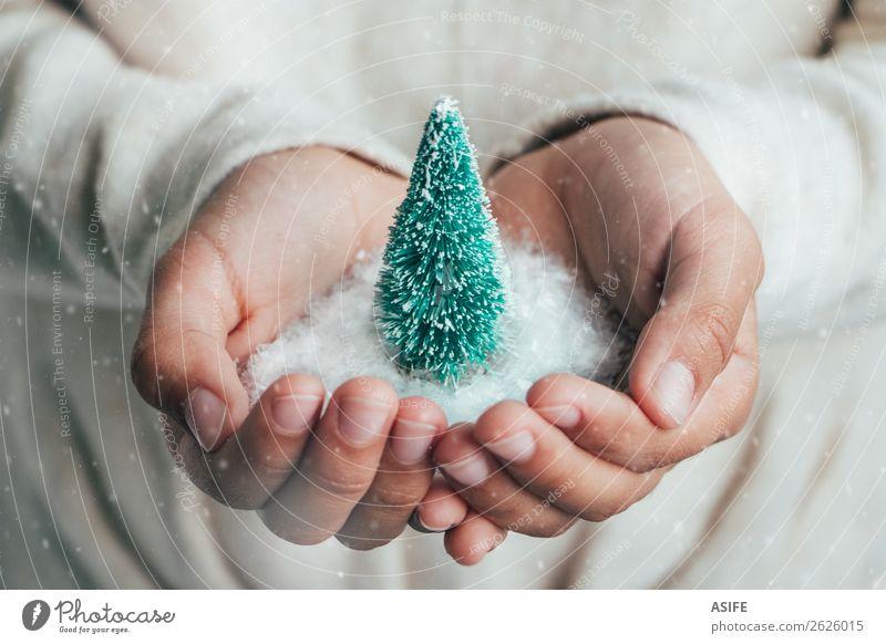 Weihnachtskonzept Freude Glück Schnee Weihnachten & Advent Kind Kindheit Hand Schneefall Baum Liebe träumen Schutz Hoffnung Idee Tanne Kiefer Weihnachtsbaum