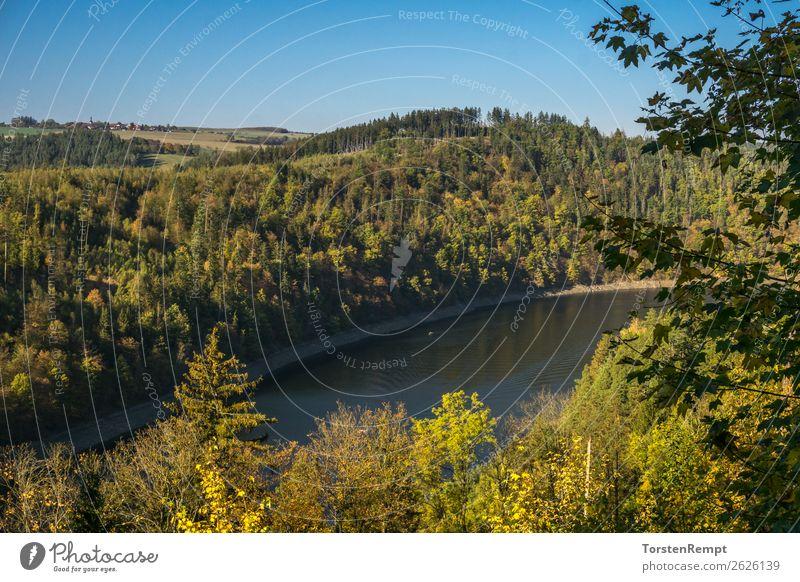 Stausee Hohenwarte Natur Landschaft Sommer Herbst Baum See entdecken Erholung blau gelb grün Lebensfreude Hohenwarte-Stausee Hohenwartetalsperre Mittelgebirge