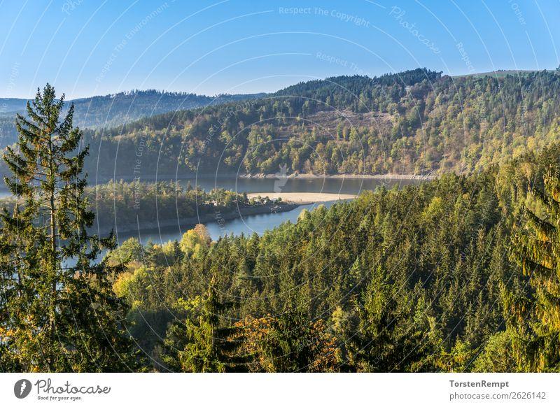 Stausee Hohenwarte Natur Landschaft Wasser Baum See atmen entdecken Erholung blau gelb grün Zufriedenheit Lebensfreude Hohenwarte-Stausee Hohenwartetalsperre