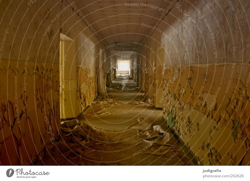 Garnison Haus Bauwerk Gebäude Mauer Wand Tür alt kaputt trashig Stimmung Angst Verfall Vergangenheit Vergänglichkeit Wandel & Veränderung Flur Gang Farbe