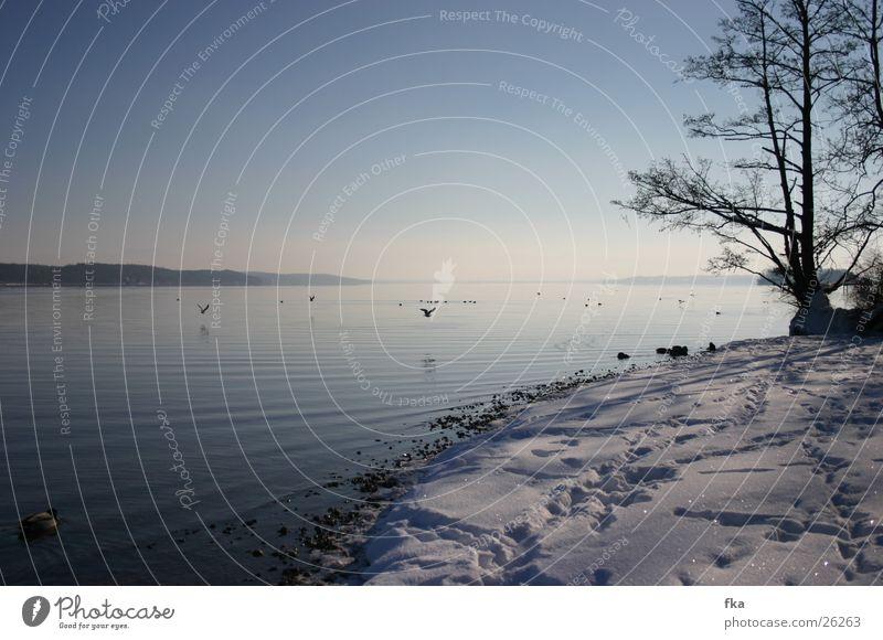 Winter am starnberger see Starnberg See Schneelandschaft Starnberger See blau glänzend