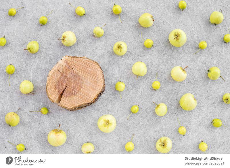 Wilde Äpfel und Apfelbaumstumpf mit Kopierraum Lebensmittel Frucht Ernährung Bioprodukte Vegetarische Ernährung Gesunde Ernährung Freizeit & Hobby Sommer Garten