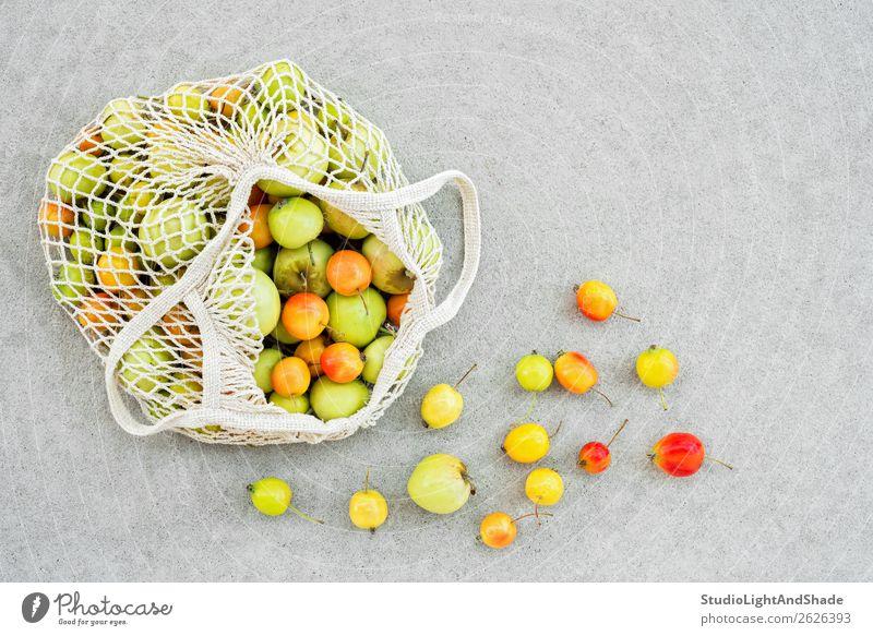 Netzbeutel voller bunter Äpfel aus dem Garten Lebensmittel Frucht Apfel Ernährung Bioprodukte Vegetarische Ernährung kaufen Gesunde Ernährung Sommer