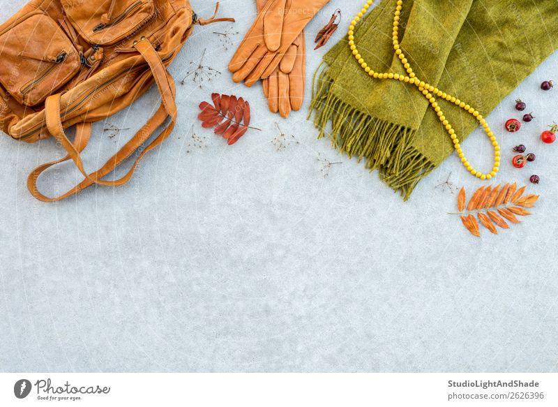 Herbstmode flachliegend in Orange- und Grüntönen Lifestyle kaufen elegant Stil schön Natur Pflanze Wetter Blatt Mode Bekleidung Stoff Leder Accessoire Schmuck