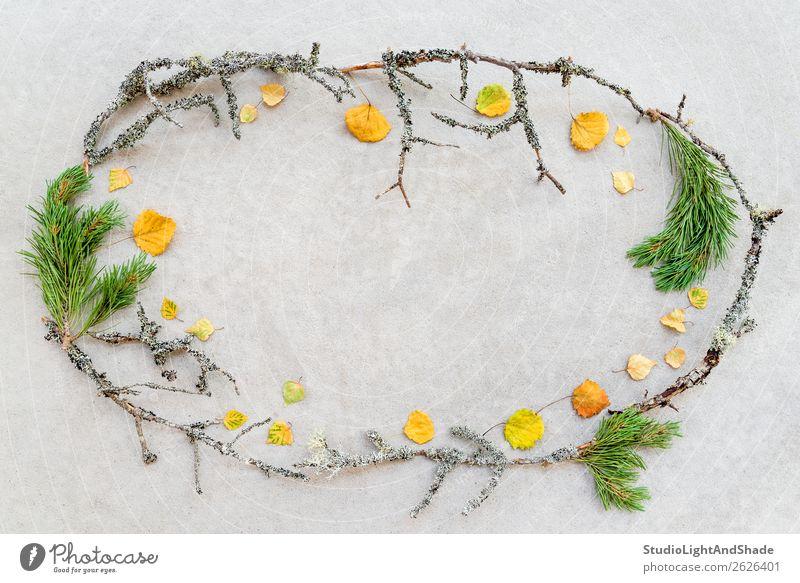 Rahmen aus Herbstblättern und moosigen Baumästen Design schön Freizeit & Hobby Handarbeit Garten Dekoration & Verzierung Gartenarbeit Landwirtschaft