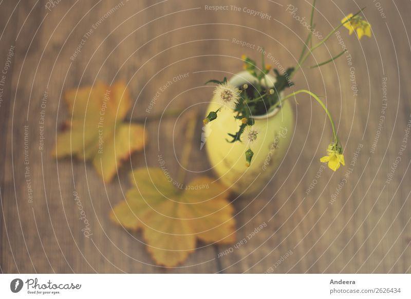 Stillleben in Gelb Wohnung Dekoration & Verzierung Tisch Natur Pflanze Herbst Wärme Blatt Blüte Wildpflanze Garten Holz Blühend hängen alt natürlich wild braun