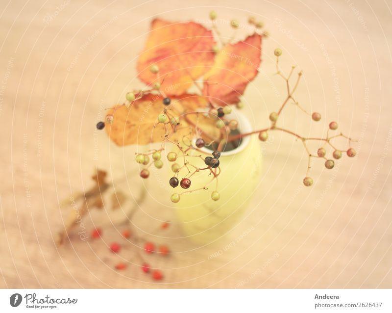 Herbstliches Stillleben mit Vase und Pflanzen Wohnung Erntedankfest Natur Sträucher Blatt Wildpflanze Dekoration & Verzierung einzigartig natürlich retro