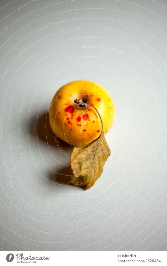 Bioapfel Natur Gesunde Ernährung Foodfotografie Speise Gesundheit Essen Herbst natürlich Garten Frucht frisch Ernte Bioprodukte Apfel Vegetarische Ernährung