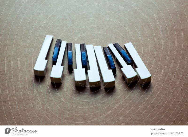 Tasten Akkord Detailaufnahme Teile u. Stücke Musikinstrument Tastatur Keyboard Klang Klavier Musik hören Musiker Musikhit Musiknoten oktave Spielzeug Klaviatur