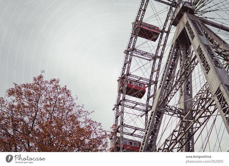 ich dreh am rad Baum Wolken Tourismus rund Bauwerk Jahrmarkt Sehenswürdigkeit Österreich Sightseeing Wien Riesenrad gigantisch Prater