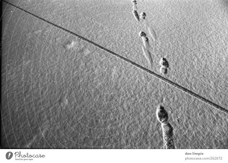 low on ice Winter schwarz dunkel kalt Schnee grau Wege & Pfade Linie gehen Spuren Fußspur analog Vorhang vorwärts kreuzen Schneespur