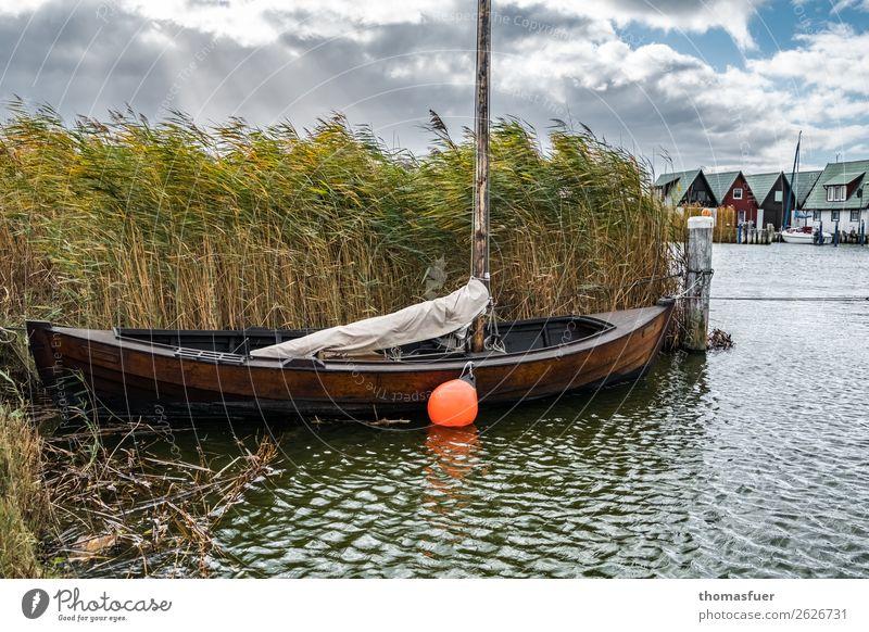 Herbstschilf Himmel Natur Ferien & Urlaub & Reisen Landschaft Haus Wolken ruhig Küste Tourismus Regen Wellen Idylle Wind historisch Seil