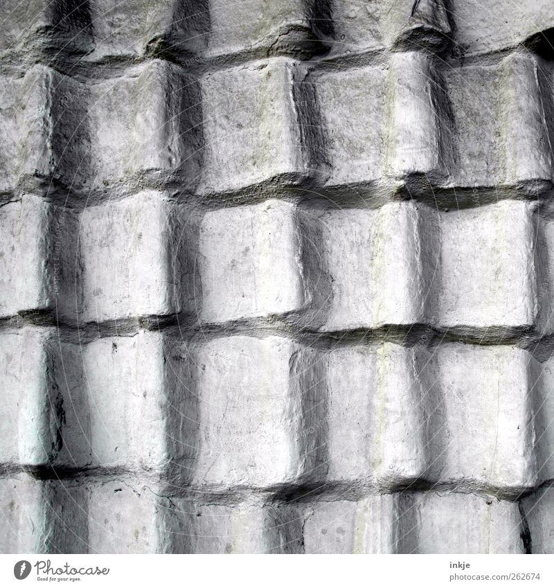 der Zementnachbar Menschenleer Bauwerk Mauer Wand Fassade Dach Dachziegel Ziegeldach Linie Wellenform alt grau Schutz luftdicht Schwarzweißfoto Außenaufnahme
