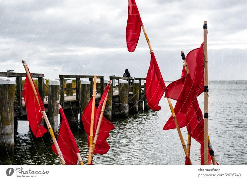 Fischerfahnen, Meer, Steg Fischernetz rot Vorpommersche Boddenlandschaft Bucht Ostsee Horizont Wolken Natur Fischereiwirtschaft Ausflug Himmel schlechtes Wetter
