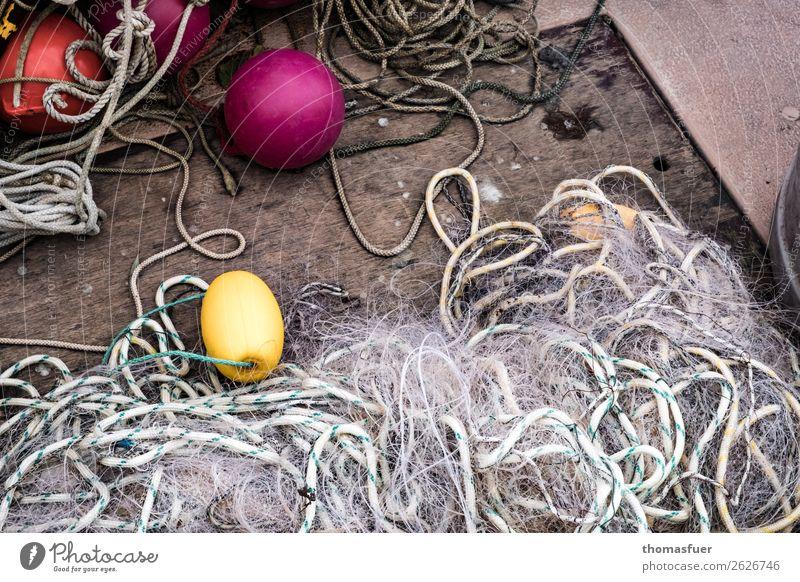 Fischernetz Arbeitsplatz Fischereiwirtschaft Fischerboot Boje Seil einfach gelb violett rot anstrengen Erwartung Idylle nachhaltig Netzwerk Ordnung Umwelt