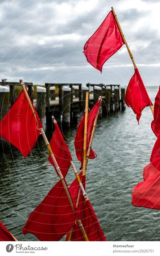 Fischerfähnchen Himmel Ferien & Urlaub & Reisen Farbe Meer Wolken Umwelt Küste grau rosa Ausflug Horizont Idylle Wind Hafen nah Steg